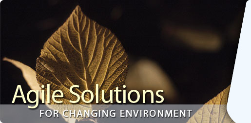 Agile Solutions for Changing Environment